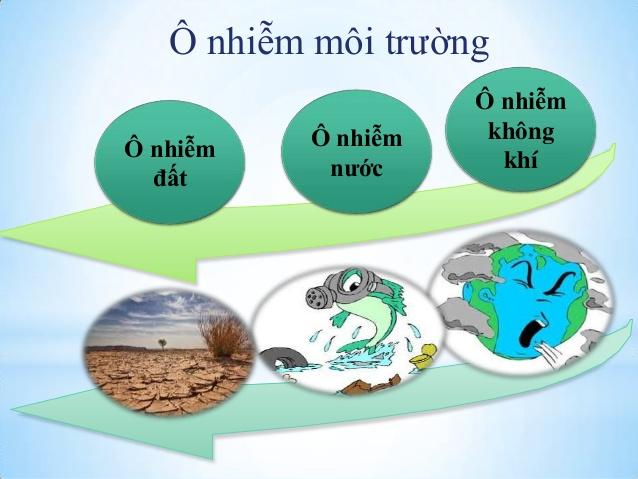 ảnh hương phân bón hóa học tới môi trường