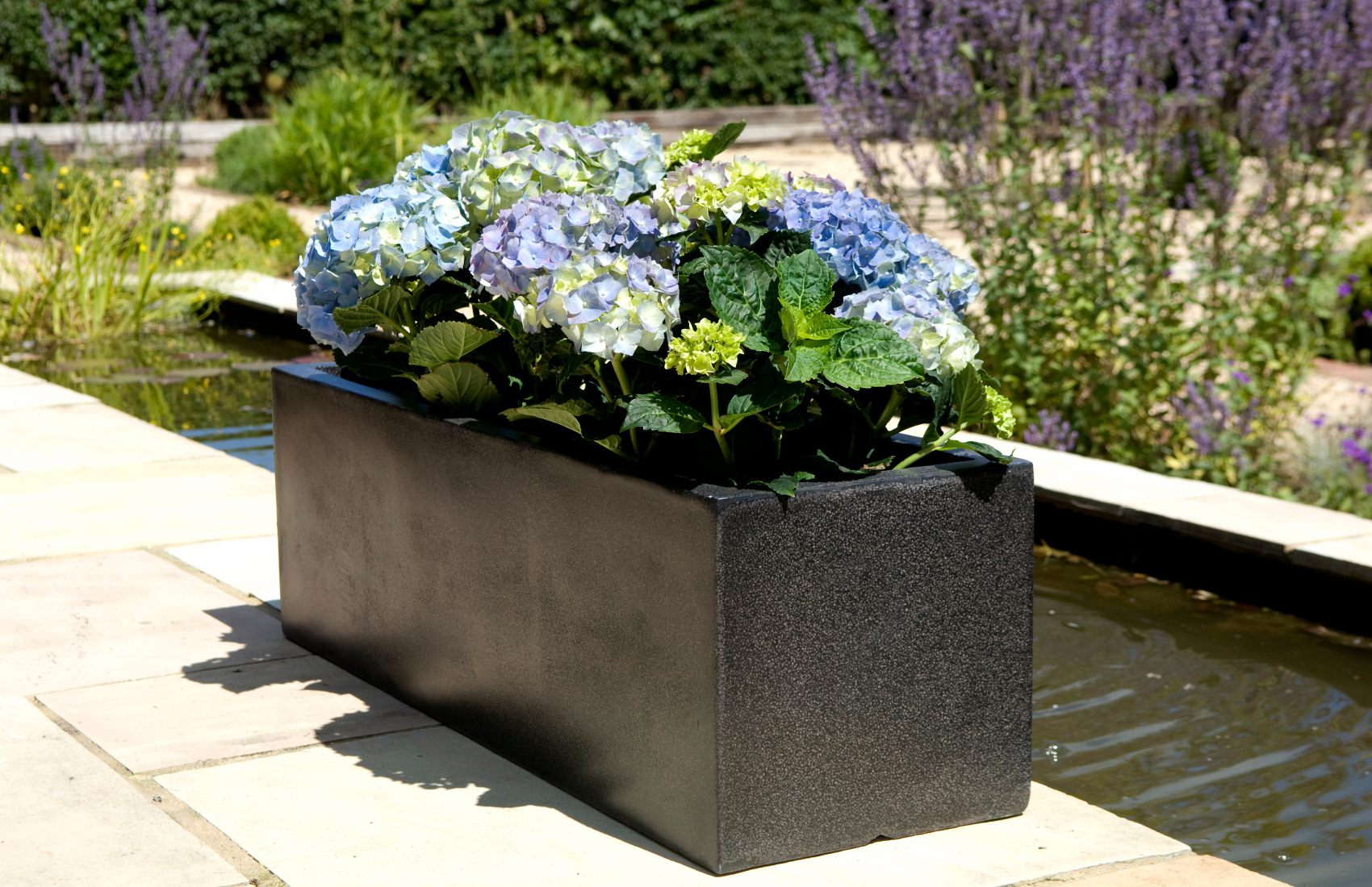 Chậu  trồng cây chử nhật tăng thêm vẻ đẹp trang nhã cho khu vườn