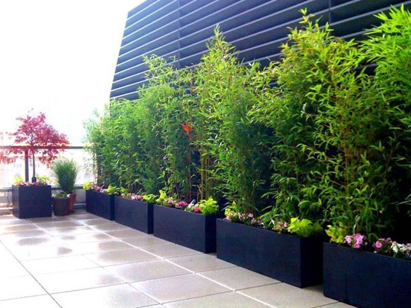 tăng sự sang trọng của khu vườn với chậu đá mài chữ nhật